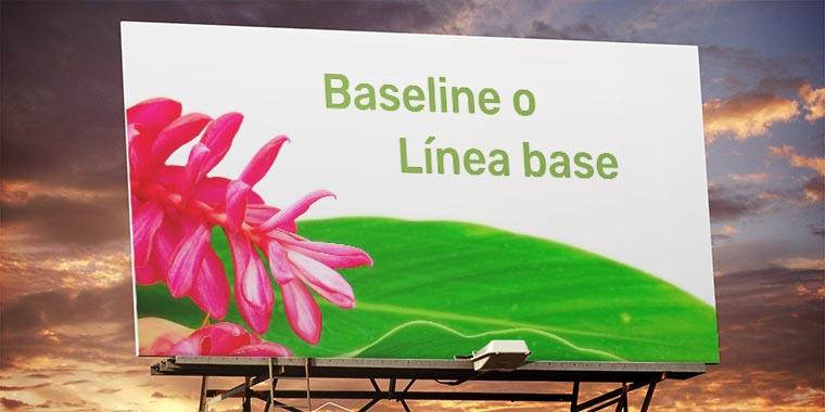 baseline o linea base