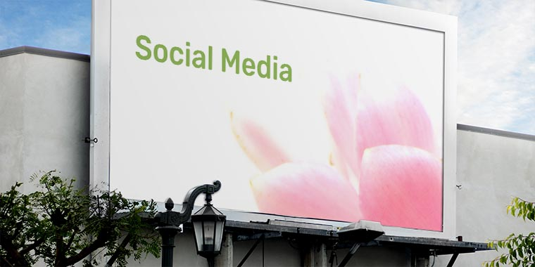 social media o redes sociales